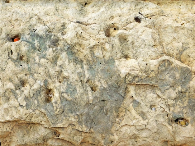 Close up de textura de pedra ao ar livre