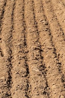Close up de um campo arado preparado para novo plantio.