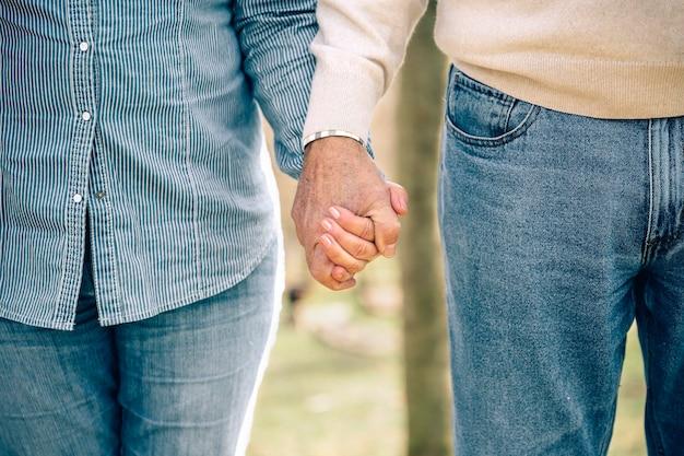 Close-up de um casal sênior de mãos dadas sobre o fundo da natureza