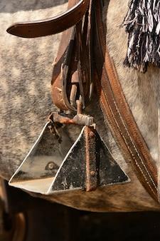 Close up de um estribo de cavalo
