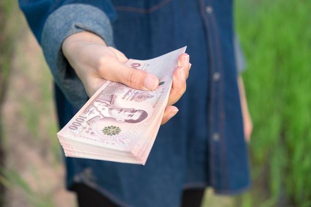 Close-up de um grande número de notas de banco tailandesas, seguradas pela mão de uma agricultora em um campo de arroz. imagem de foco seletivo.