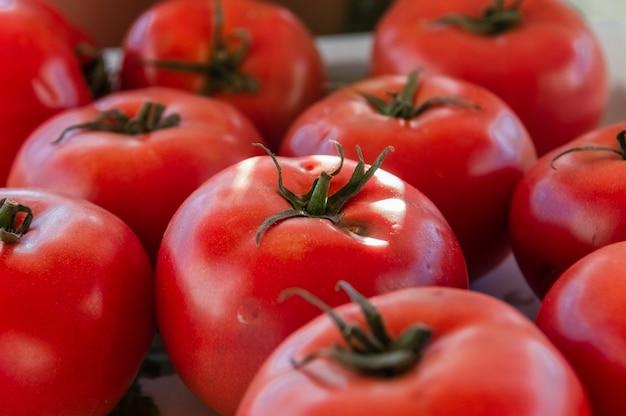 Close up de um grupo de tomates maduros e frescos em cima da mesa