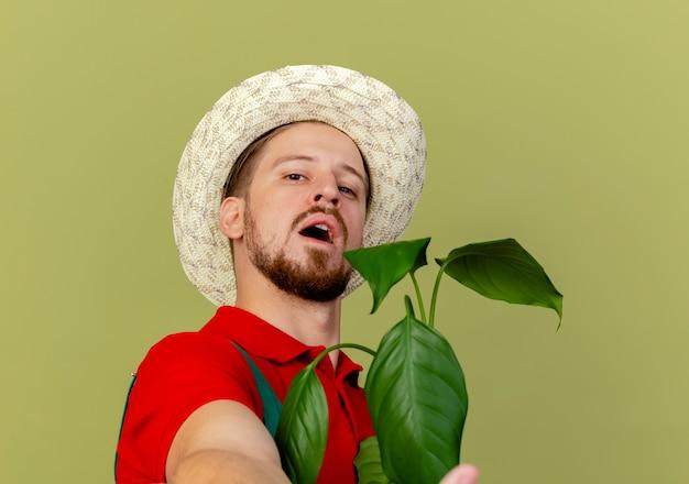 Close-up de um jovem e confiante jardineiro eslavo bonito de uniforme e chapéu segurando uma planta, olhando esticando a mão em direção ao isolado
