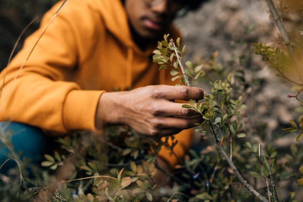 Close-up, de, um, macho, hiker, olhando, a, filial árvore