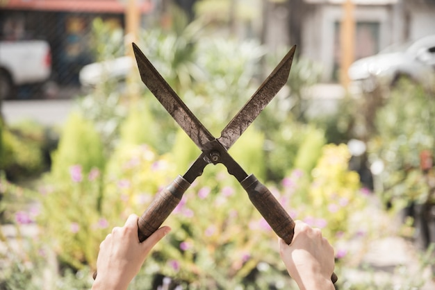 Close-up, de, um, mão mulher, segurando, jardinagem, tesouras