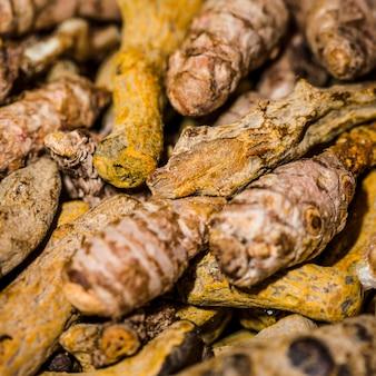 Close-up de um monte de raízes