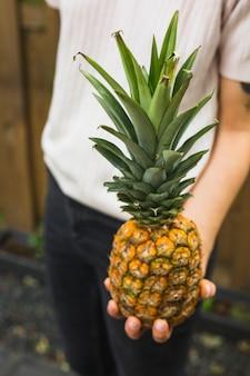 Close-up, de, um, pessoa, segurando, inteiro, abacaxi, em, mão