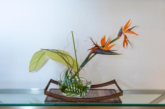 Close up de uma flor tropical em um vaso de vidro na ilha de zanzibar, tanzânia, áfrica oriental