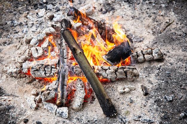 Close-up de uma fogueira acesa na floresta em um piquenique.
