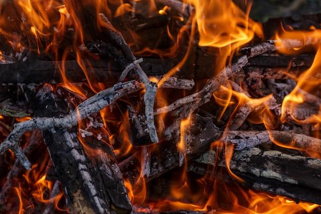 Close up de uma fogueira ao ar livre