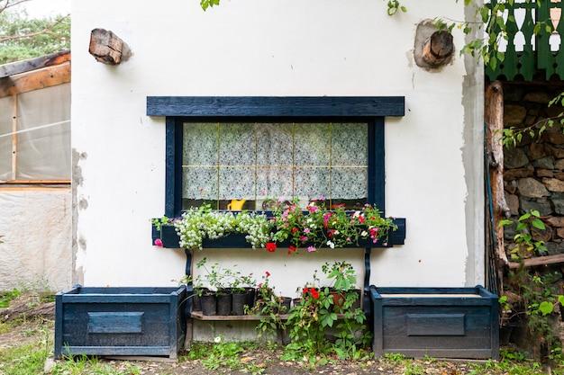 Close-up de uma janela encantadora de uma casa velha branca com persianas de madeira pretas e decorada com vasos de plantas e flores verdes
