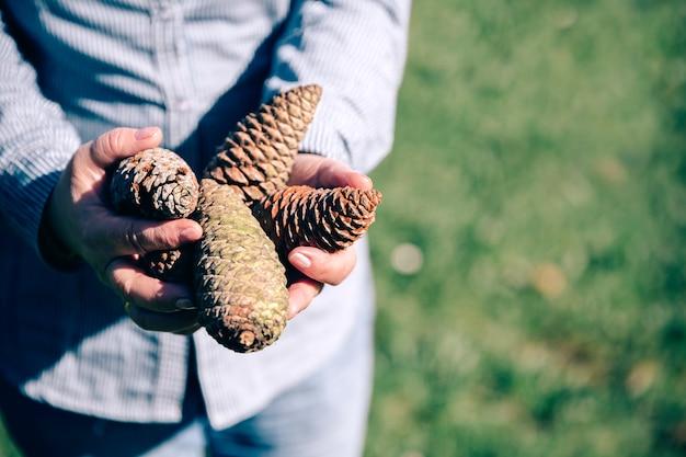 Close-up de uma mulher sênior segurando pinhas nas mãos sobre um fundo natural