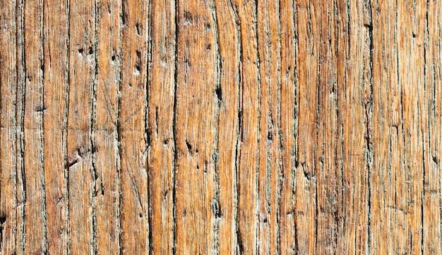 Close-up de uma porta de madeira com painéis velha; rusty e resistido.