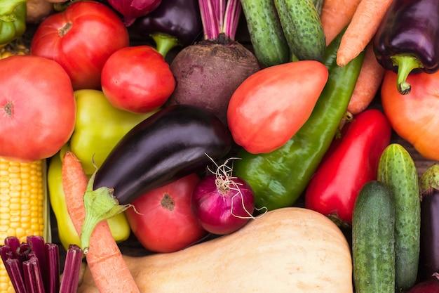 Close-up de uma safra fresca de vegetais, a colheita de um fazendeiro, uma horta e jardinagem. ecoprodutos, vegetarianismo, proteína alternativa, nutrição vegetal
