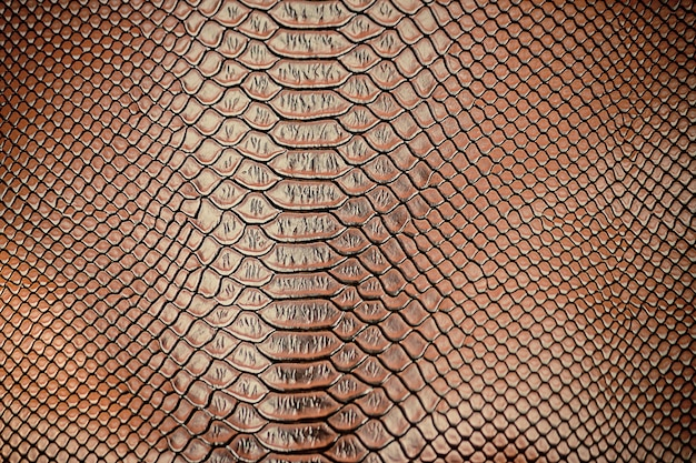 Close-up de uso de textura de pele de cobra de luxo para o fundo