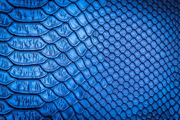 Close-up de uso de textura de pele de cobra para plano de fundo
