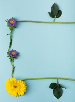 Close-up de vários tipos de flores e folhas, formando uma moldura natural