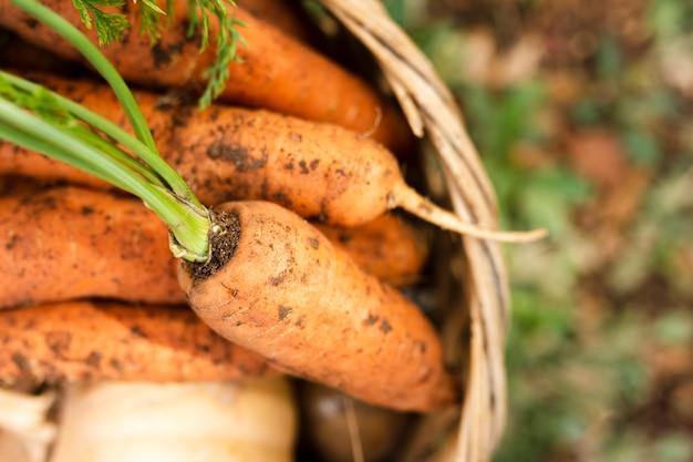 Close-up deliciosas cenouras em uma cesta