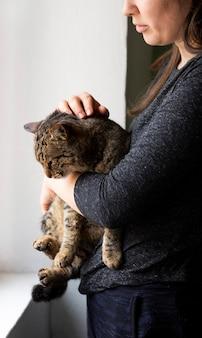 Close up do proprietário acariciando o gato