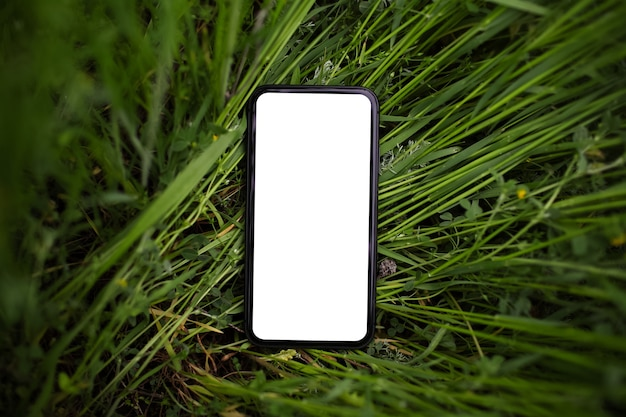 Close-up do smartphone com maquete na grama verde. vista do topo. fundo natural.