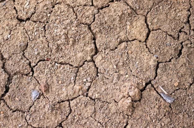 Close-up do solo seco