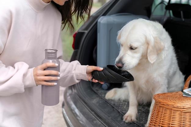 Close-up dono dando água para cachorro