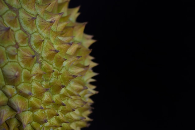 Close-up, durain mon thong, rei das frutas no fundo preto.