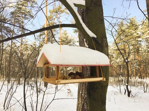 Close-up em alimentador de pássaros de madeira na floresta de inverno