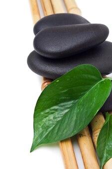 Close-up em folhas e pedras de spa