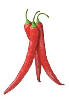 Close-up em pimentas vermelhas geladas isoladas
