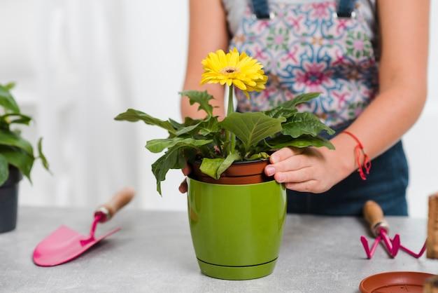Close-up feminino plantando flores
