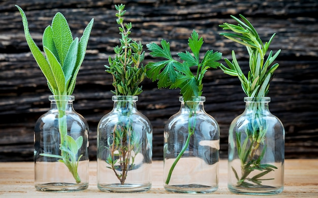 Close up garrafas de óleos essenciais com ervas frescas