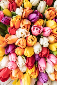 Close-up grande lindo buquê de tulipas mistas. fundo e papel de parede da flor. conceito de loja floral. lindo buquê recém-cortado. entrega de flores.