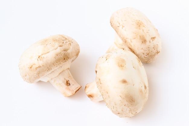 Close-up isolado de champignon