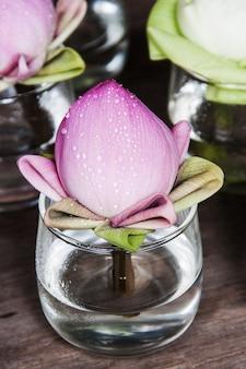 Close-up lotus em copo de água e fundo escuro