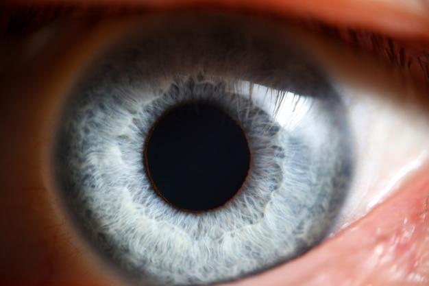 Close up macro super humano masculino dos olhos azuis. teste de visão saudável