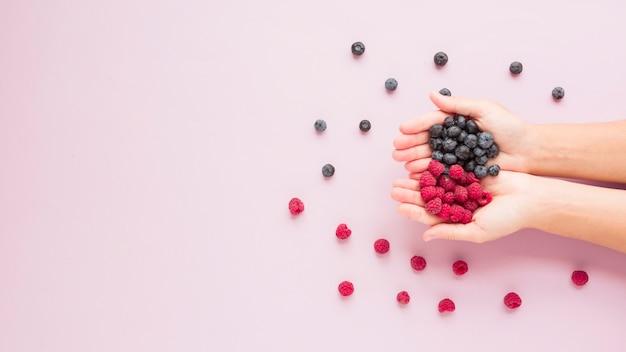 Close-up mãos, segurando, framboesas, e, mirtilos, ligado, fundo cor-de-rosa