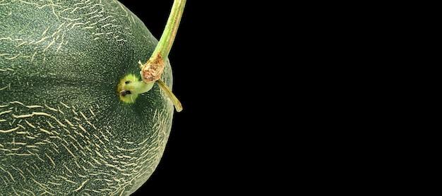 Close-up melão isolado no fundo branco, frutas tropicais