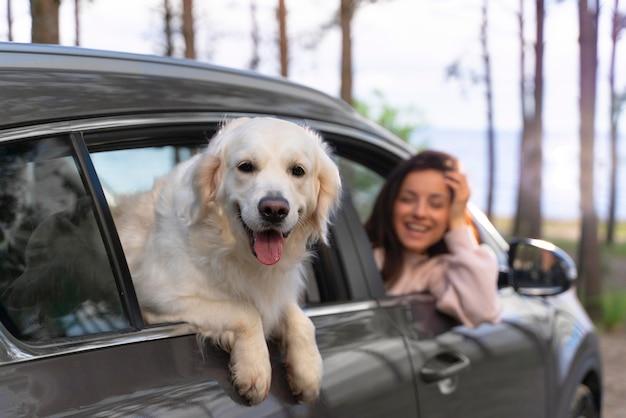 Close-up mulher com cachorro no carro