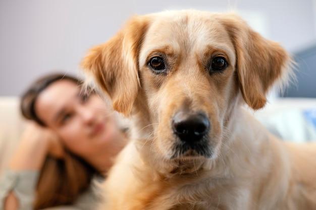 Close-up mulher embaçada com cachorro