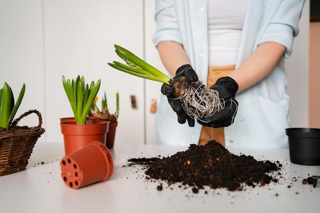 Close-up mulher plantando bulbos