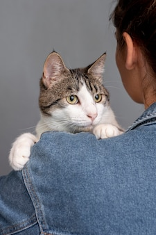 Close-up, mulher segura, gato