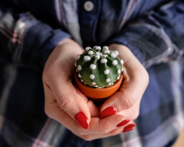 Close-up mulher segurando planta