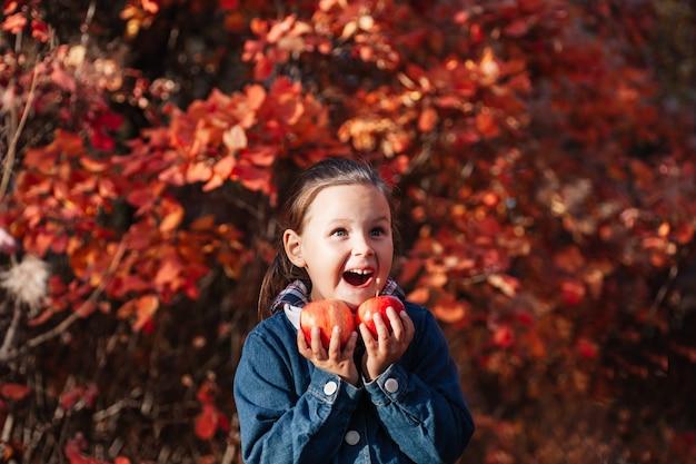 Close-up outono conceito foreest menina muito deliciosa segurar grande maçã vermelha na mão com outono ba ...