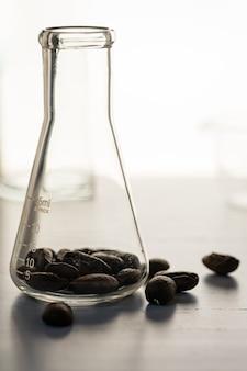 Close-up shot de grãos de café em vidro de laboratório sendo testado