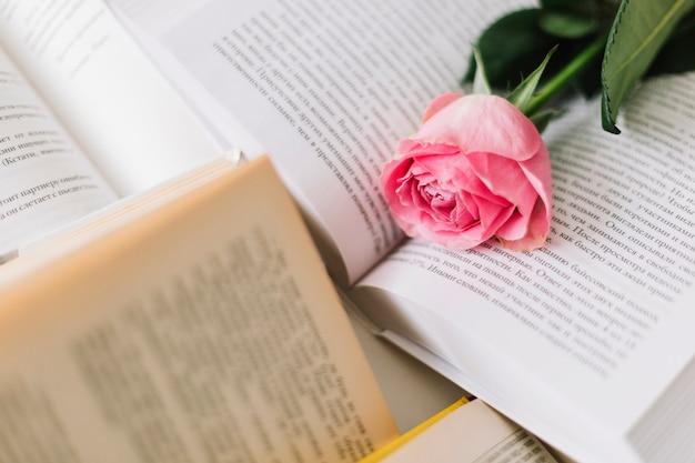 Close-up subiu em livros abertos