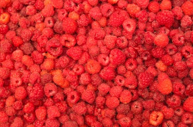 Close up suculento de framboesa vermelha madura como pano de fundo