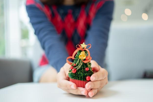 Close-up tiro de mãos femininas segurando uma pequena árvore de natal
