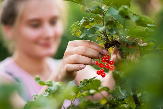 Close-up turva menina colhendo frutas