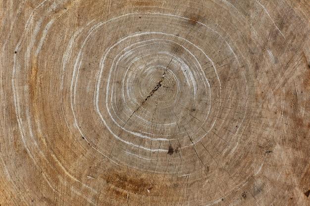 Close-up velha textura de madeira para o fundo
